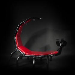 Scorpio BDSM Chair